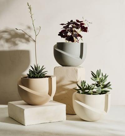LightLadder-Vayu-Ceramic-Planter-Plants_Crop